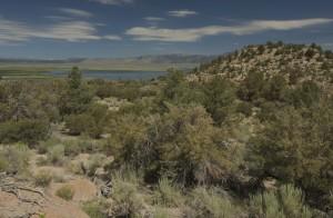 crowley_hilltop_preserve.jpg
