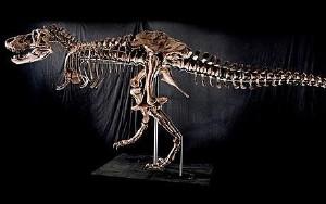 t_rex