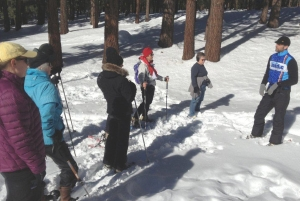 Mammoth Moves walk sponsored by Mammoth Nordic and led by Brian Knox.