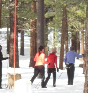 Mammoth Nordic and friends enjoy the snow.