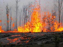 sequoiafire