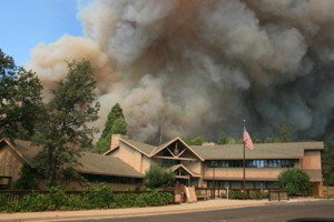rimfirecalfire
