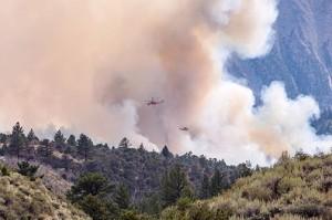 Photos courtesy US Forest Service