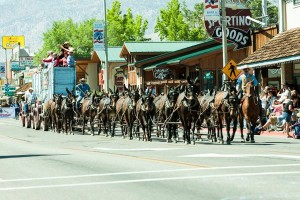 Bob Tanner and the 20 mule team mule days parade