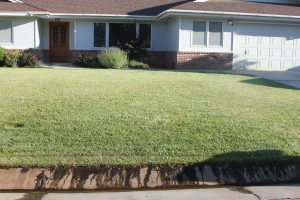 This isn't wasteful lawn sprinkler run-off, it's groundwater running over the curb.