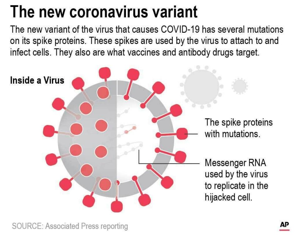 Covid 19 Variants Present Increased Infection Risks Health Authorities Say Not To Worry Sierra Wave Eastern Sierra Newssierra Wave Eastern Sierra News